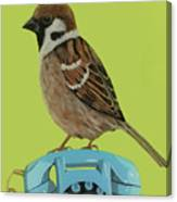 Sparrow Perched On Vintage Telephone Canvas Print