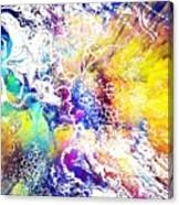 Spazz Canvas Print