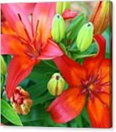 Spectacular Day Lilies Canvas Print