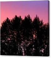 Spectacular Silhouette Canvas Print