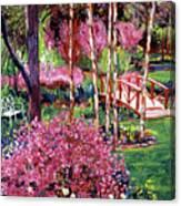 Spellbound Color Impressions Canvas Print