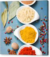 Spices On Blue   Canvas Print