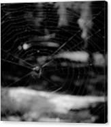 Spider Web Black White Canvas Print