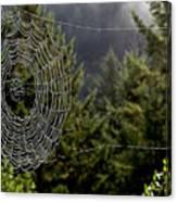 Spider Web Overlook Canvas Print