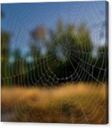 Spiderpane Window Canvas Print