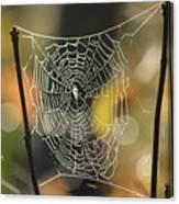 Spider's Creation Canvas Print