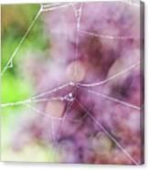 Spiderweb In The Mist Canvas Print