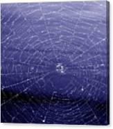 Spiderweb Canvas Print