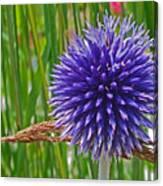 Spiky Blue Canvas Print