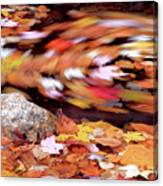Spinning Leaves Of Autumn Canvas Print