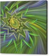 Spinning Star Canvas Print