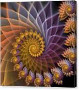 Spiralined Canvas Print