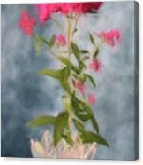 Spirea In Crystal Canvas Print