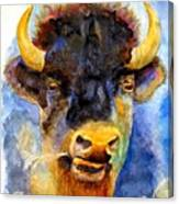Spirit Buffalo Canvas Print