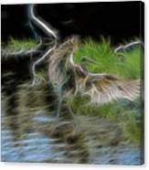 Spirit Garden 4 Canvas Print