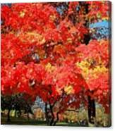 Spirit Of Fall Canvas Print