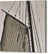 Spirit Of South Carolina Schooner Sailboat Sail Canvas Print
