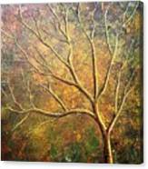 Spirit Tree 5 Canvas Print