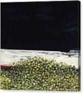 Spivey League Canvas Print