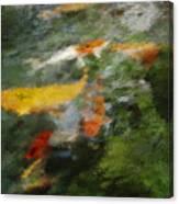 Splash Of Koi Canvas Print
