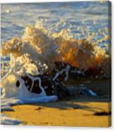 Splash Of Summer - Cape Cod National Seashore Canvas Print