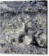 Splashy Incantations Of A Momenary Water Sculpture Canvas Print