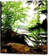 Split Rock State Park Canvas Print