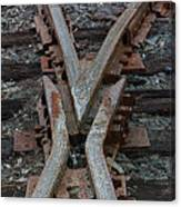 Split Track Canvas Print