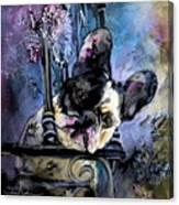 Spok Canvas Print