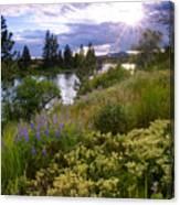Spokane River Wildflowers Canvas Print