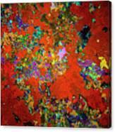 Sponges On Hull Of Sunken Ship Canvas Print