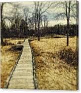 Spooky Hike On The Appalachian Trail Canvas Print