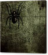 Spooky Spider Canvas Print