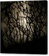 Spooky Sumac Canvas Print