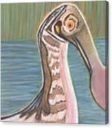 Spoonbill Canvas Print