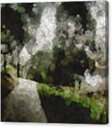 Spot Light On A Fight On A Lone Path Canvas Print