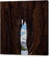 Spot The Lake Shore View Through The Hollow Tree Trunk Canvas Print