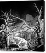 Spotlight On The Rim Canvas Print