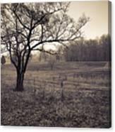 Spotsylvania Battlefield Canvas Print