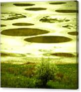 Spotted Lake Canvas Print