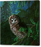 Spotted Owl In Ancient Forest Canvas Print
