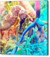 Spotty Seahorse Canvas Print