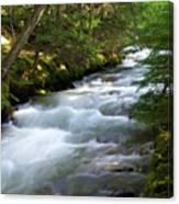 Sprague Creek Glacier National Park 2 Canvas Print