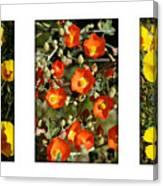 Spring - Desert Style 2 Canvas Print