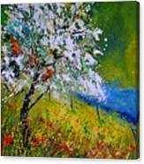 Spring 451110 Canvas Print