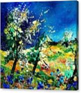 Spring 56 Canvas Print