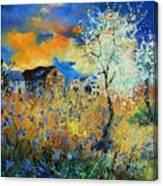 Spring 67 Canvas Print