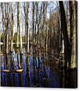 Spring At The Pond Canvas Print