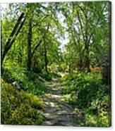 Spring At The Urban Oasis Portrait Canvas Print