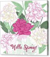 Spring  Background With White And Pink Peony Canvas Print